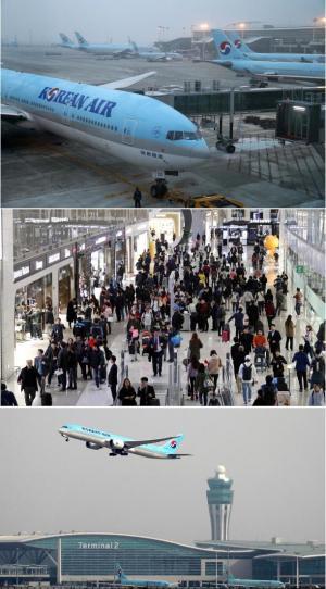 인천공항 T2 개항 둘째날...터미널 잘못 찾아간 승객 242명