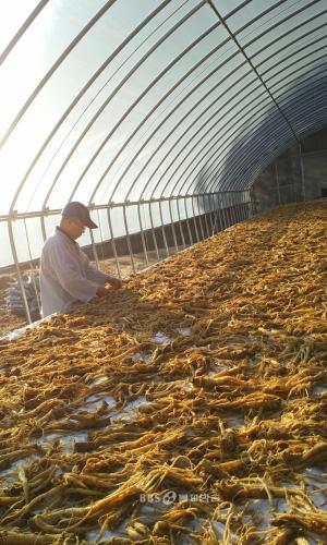경북 봉화 백두대간에 있는 '보광사'가 8천 평 농사를 짓는 이유는?
