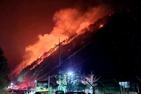 어제(20일) 오후 강원도 정선군 여량면 구절리 노추산에서 산불이 발생해 오늘 오전 4시 30분 현재 산림 6만 5천 ㎡를 태웠다. 소방 당국은 날이 밝는대로 헬기를 투입해 진화에 나선다.